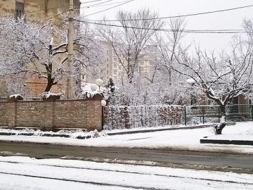 Сад ЭкодизайнПлюс_8